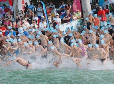 Les concurrents devraient être encore nombreux à prendre les différents départs de la populaire traversée Anse-Vata - Ile aux Canards (et retour), comme ici lors de la précédente édition. Et cette année, trois nageurs australiens seront également de la partie.